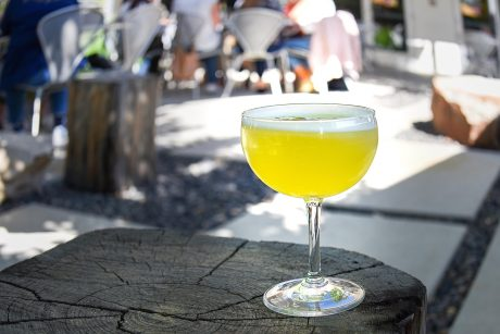 The new menu at the Modern Bar in Boise Idaho includes the cocktail pictured here. The Jade Coast is served in a coupe glass. It is yellow green in color with white froth on top and a dried lime as garnish. The cocktail sits on a square wooden stump used for sitting around the fire pits in the Modern Hotel courtyard. In the background a blurred group of people dine at a patio table.